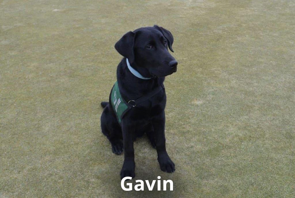 dog friendly golf courses