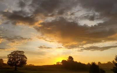 Changeable – Our Weather Norm Fore a While