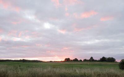 And The Sun Rises Again!!